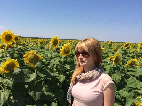 files/gallery/sunflower_2014.jpg